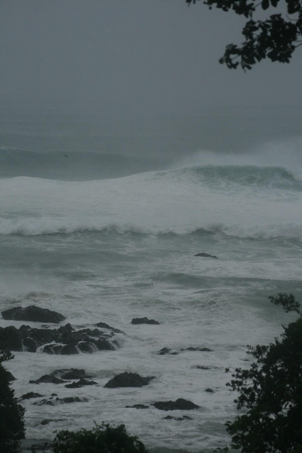Taifu181